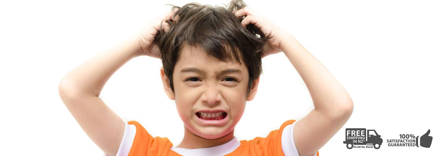Get rid of the itchy scalp from head lice bites with Lice Lather Treatment Shampoo -Best Nit Treatment in NZ
